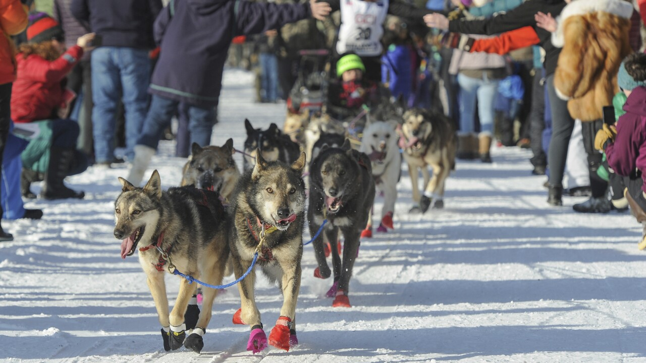 Big Crowds Cheer Kick Off Of Alaska's Famed Iditarod Race