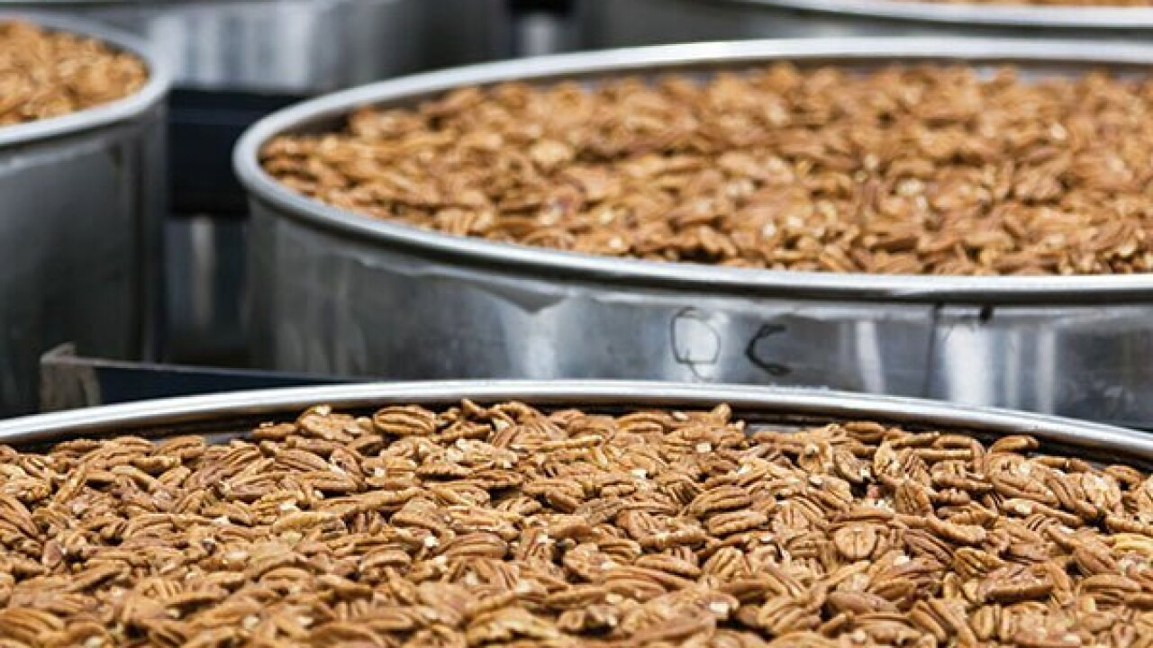 How pecans go from the trees to your table