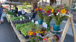 Helena Farmers' Market slated to return on Saturday