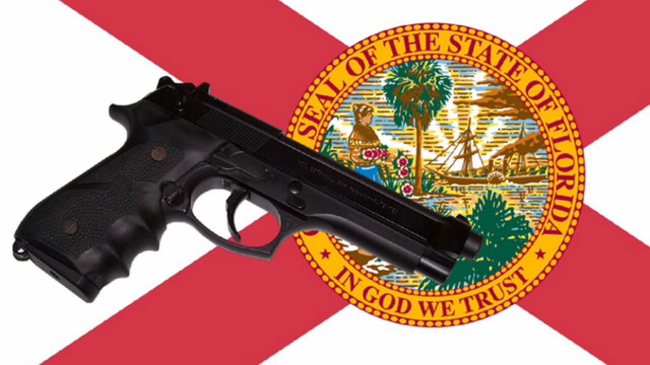 Concealed carry allowed in Florida churches