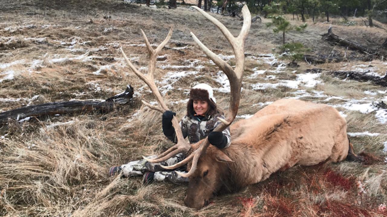 Annie Crone Trophy Elk