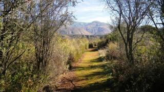 wilderness gardens preserve pala.jpg