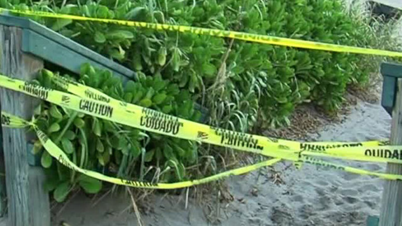Unknown irritant closes Fla. East Coast beaches
