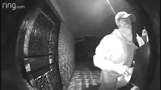 Denver area mail theft surveillance video