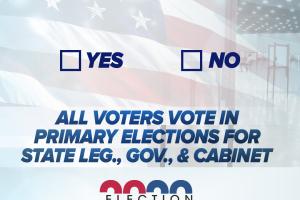 Election2020-Amendment3.png