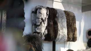 Boulder fur ban