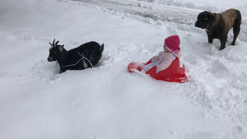 goshen_snow.jpg