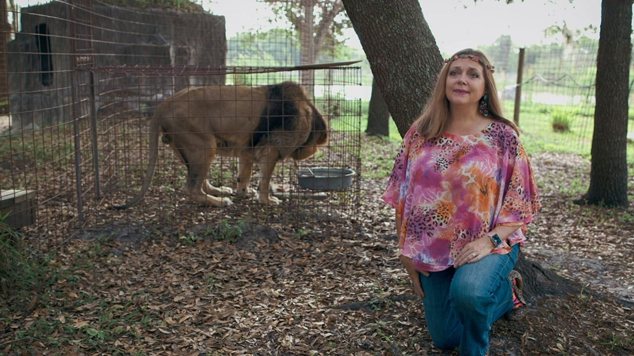 Animal bites staff member at Carole Baskin's Big Cat Rescue in Florida