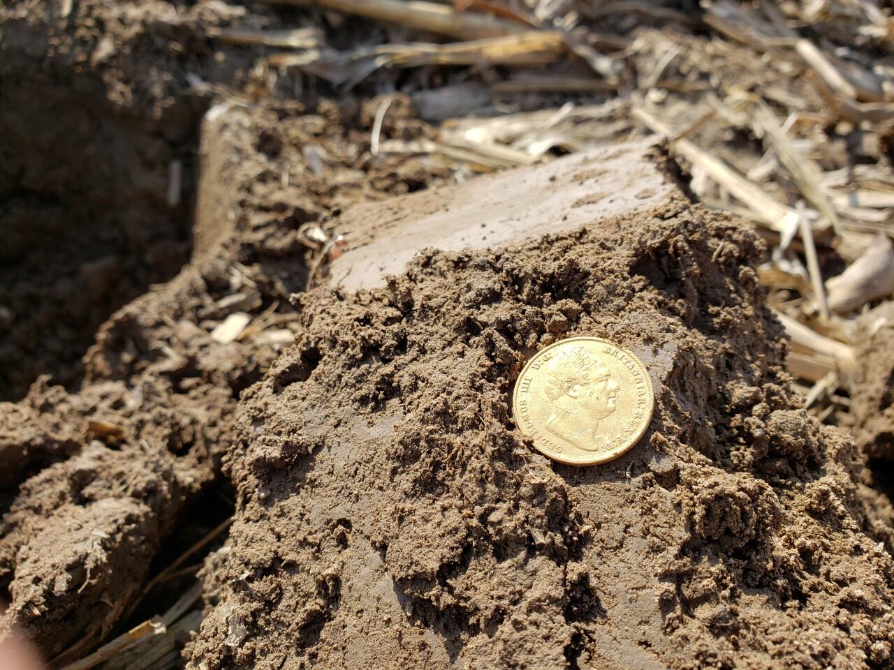1837 British Gold Coin