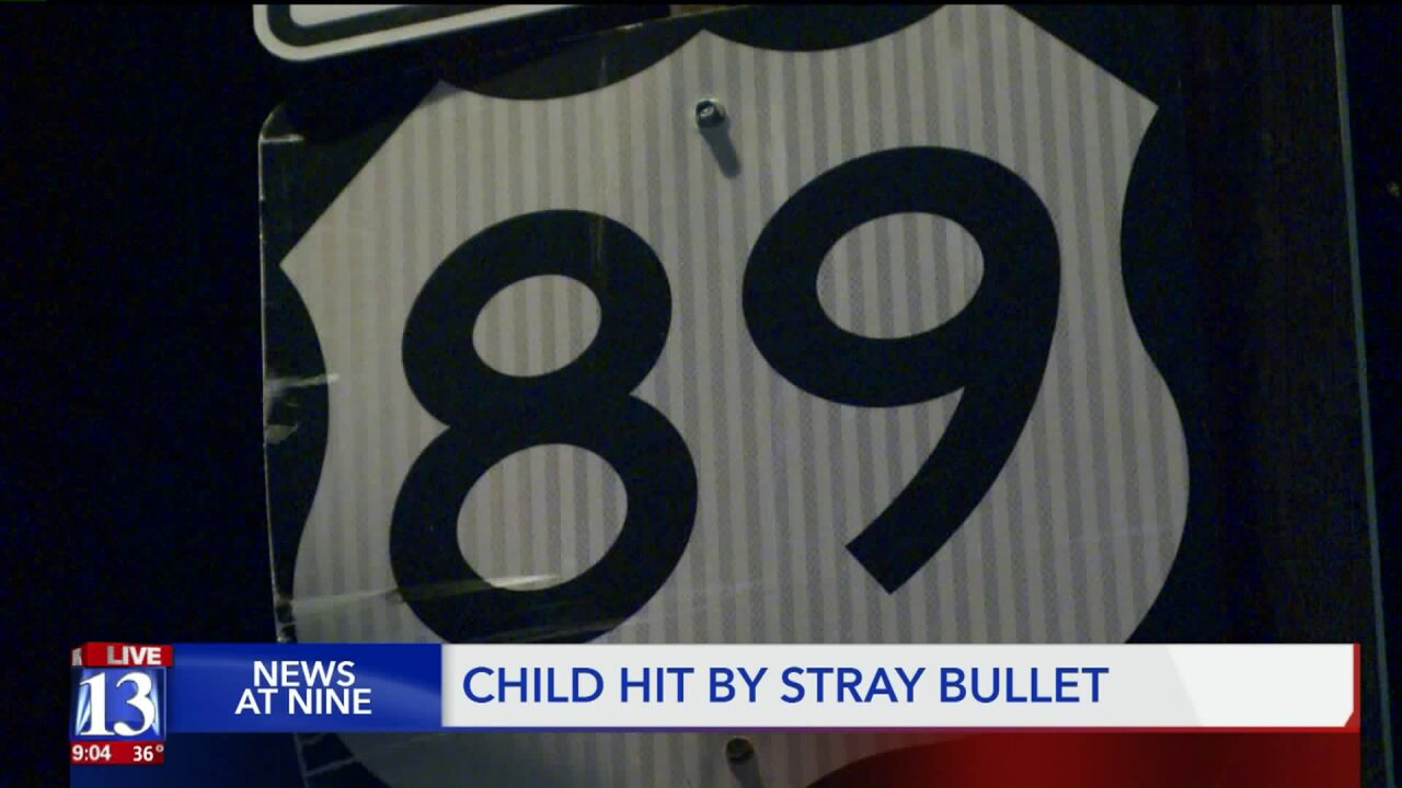10-year-old hit by stray bullet from target shooters, Sanpete Sheriffsays