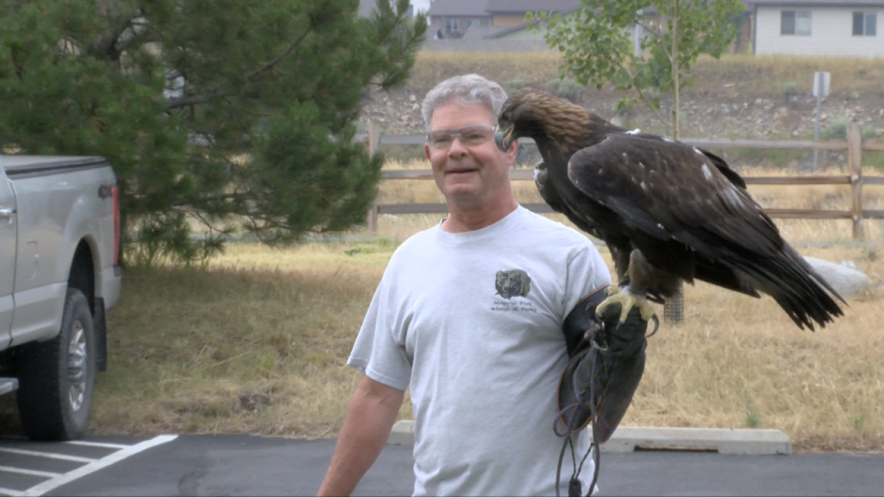 For the Birds: FWP'S Wildlife Rehabilitation Center is helping raptors get back to the wild