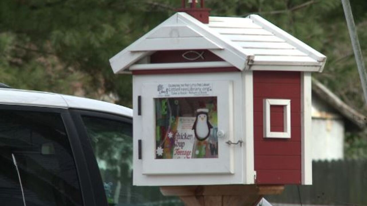 Book bandits make off with over 70 books from 'Little Free Library' inPortsmouth