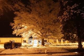 Gloucester (Cheryl Slavnik) 8.jpg
