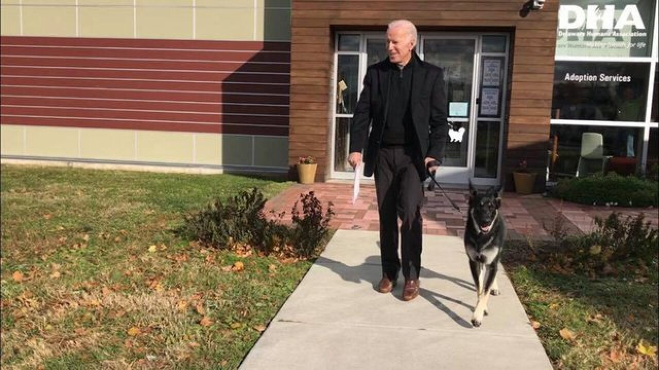 Biden adopts German shepherd named Major
