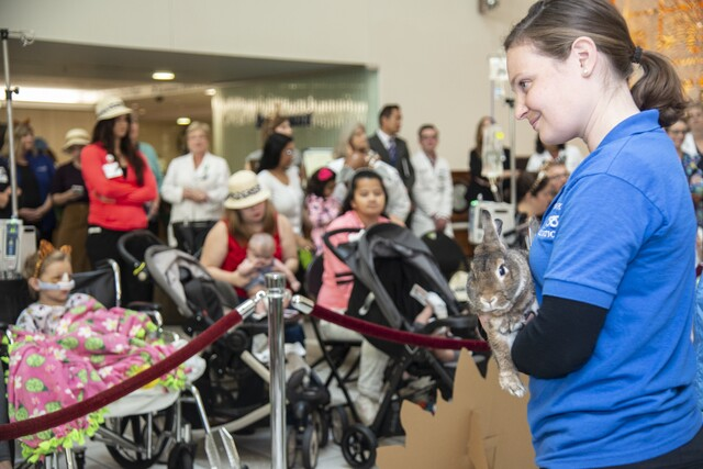 GALLERY: Beaumont Children's Hospital welcomes San Diego Zoo Kids TV Channel