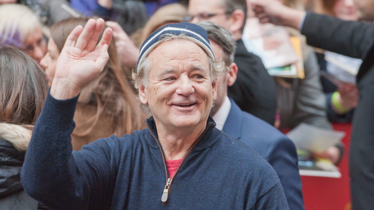 Bill Murray's food truck park to open this summer