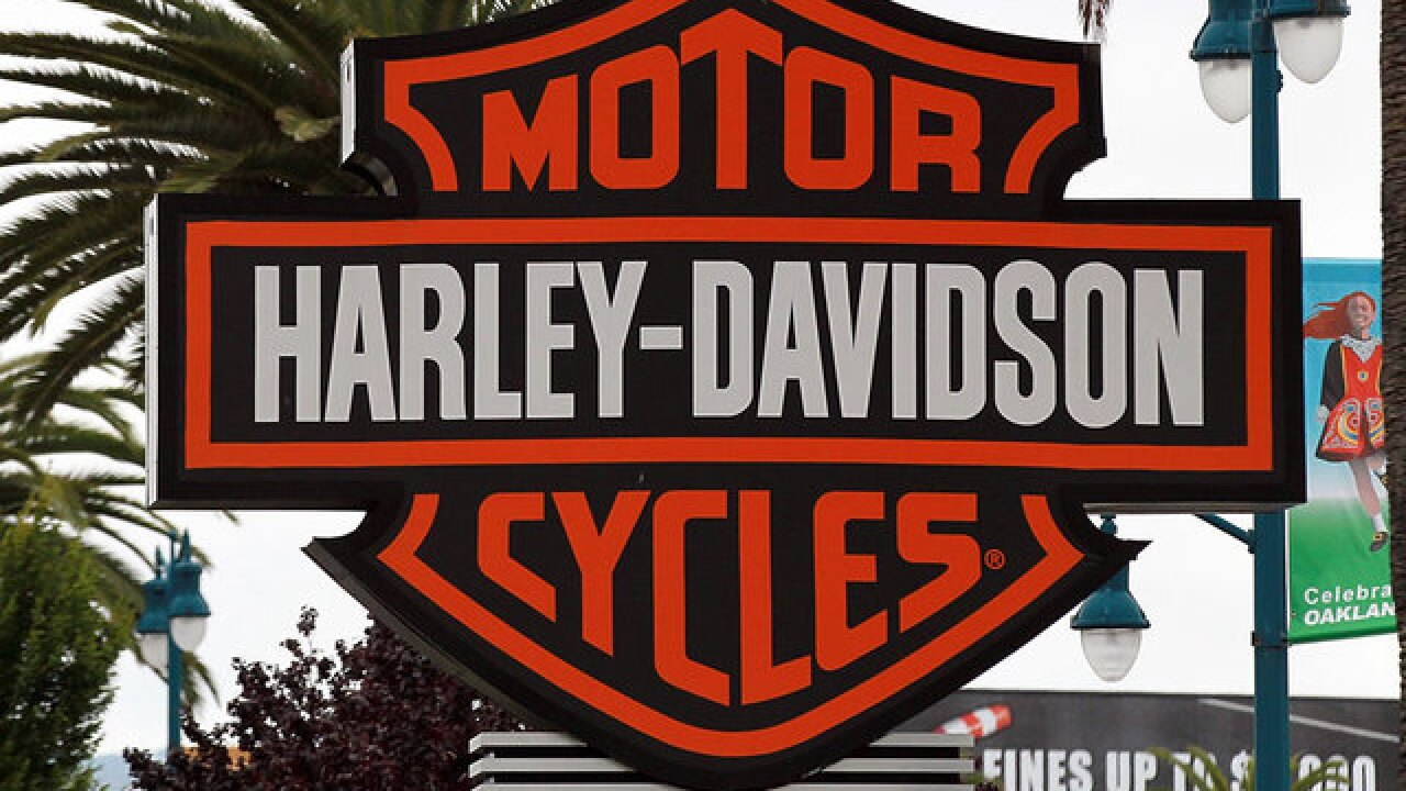 Dream job: Harley-Davidson paid interns get a motorcycle too