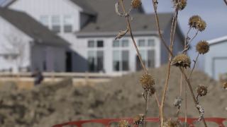 Brookfield Residential selling dozens of lots in Brighton Crossings for built-for-rent homes