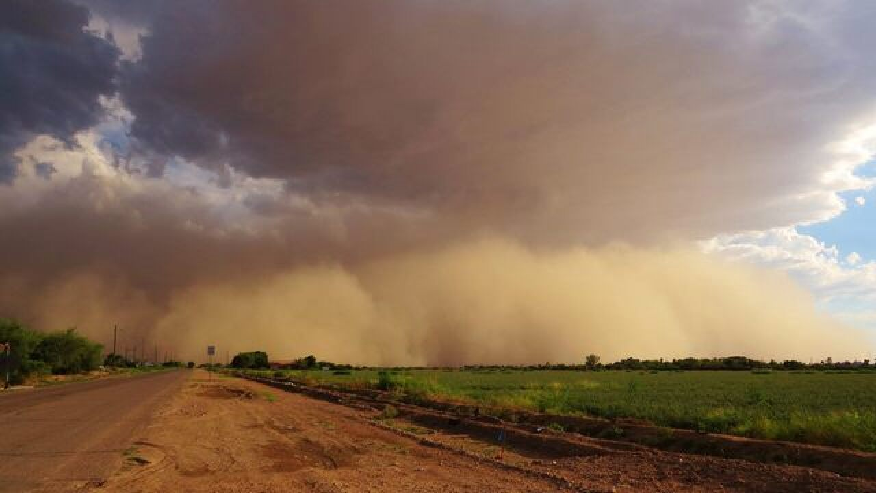 IMAGES: Monsoon storm brings dust, rain to PHX