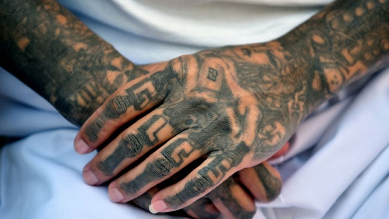 Nearly 100 arrested in MS-13 gang crackdown on Long Island
