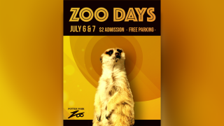 Potter Park Zoo - Zoo Days.png