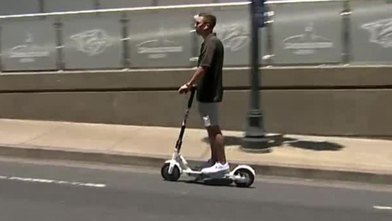 City Receives 200 Complaints Since Bird Lands In Nashville