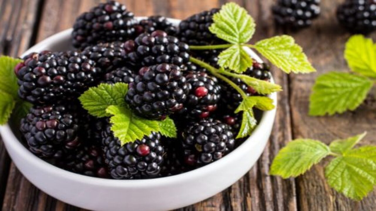 Frozen Berries Sold At Wal-Mart, Save-A-Lot Recalled For Norovirus Risk