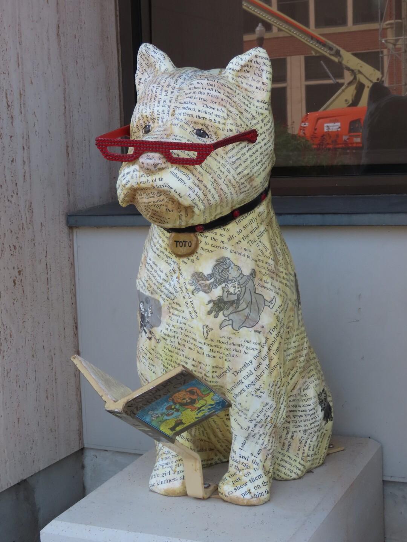Toto enjoying a book.JPG
