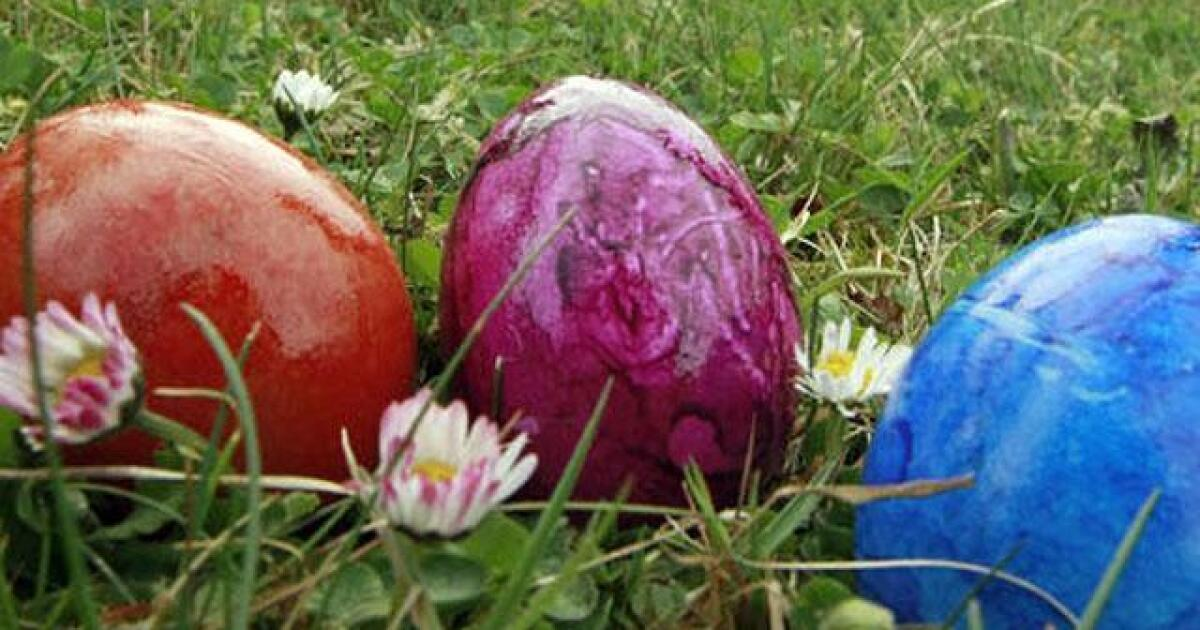 San Diego county egg hunts to spring into this season