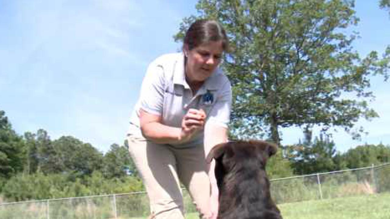 Currituck County volunteer makes helping animals her life'swork