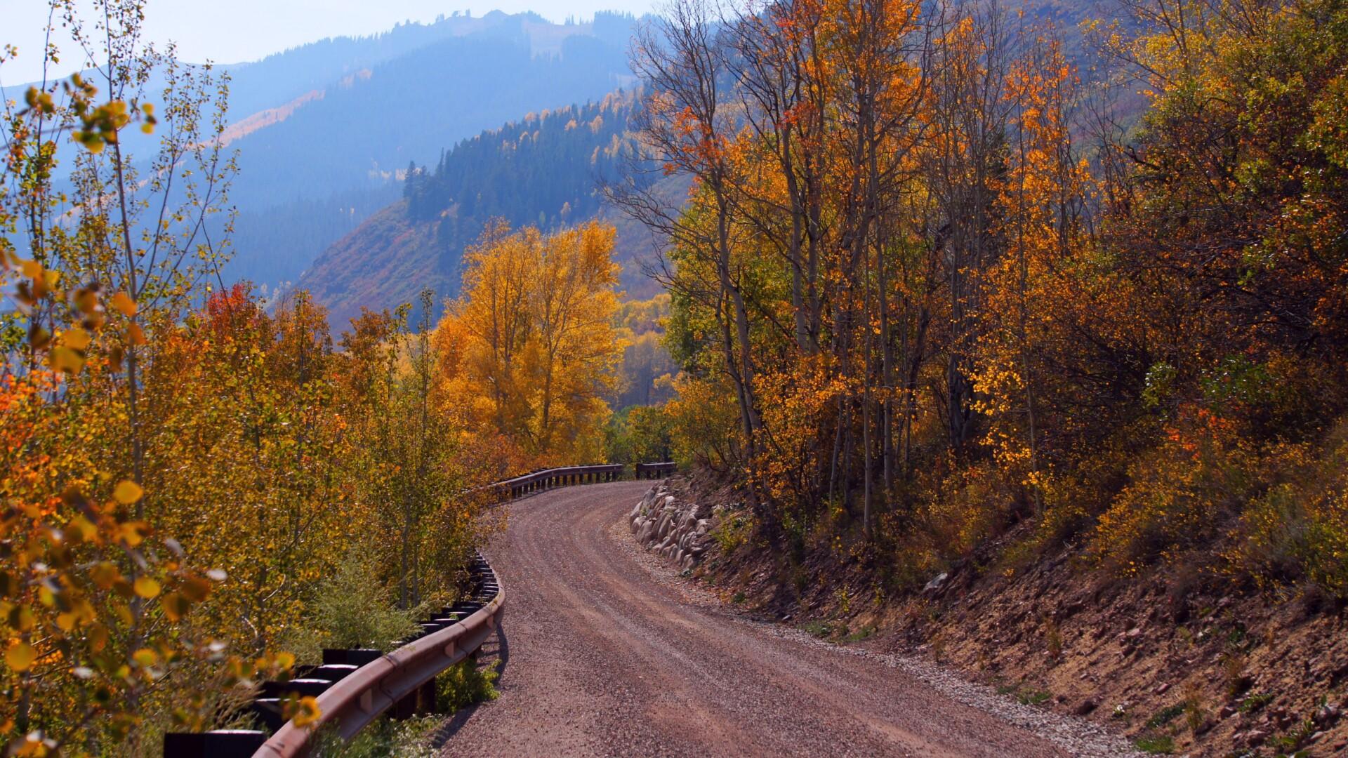 Aspen Country Road Shawn Rosvold.jpg