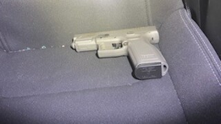 Petty Arrest-Gun.jpg