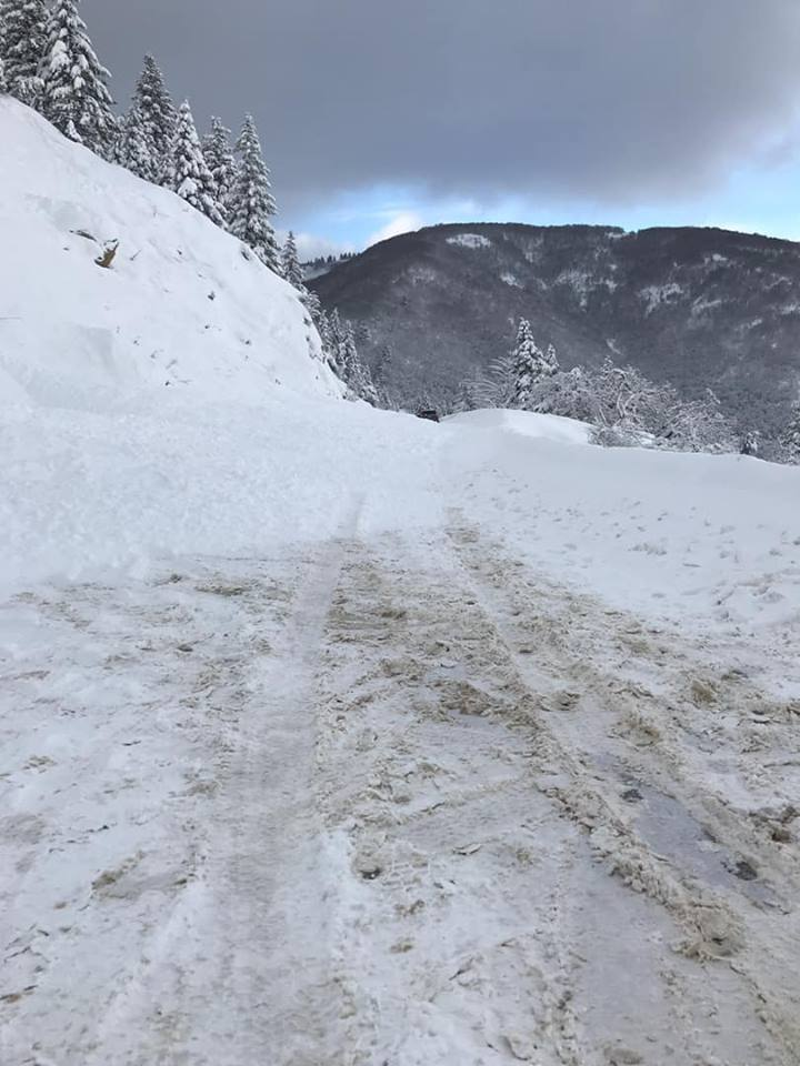 Photos: Three small avalanches close North Ogden road