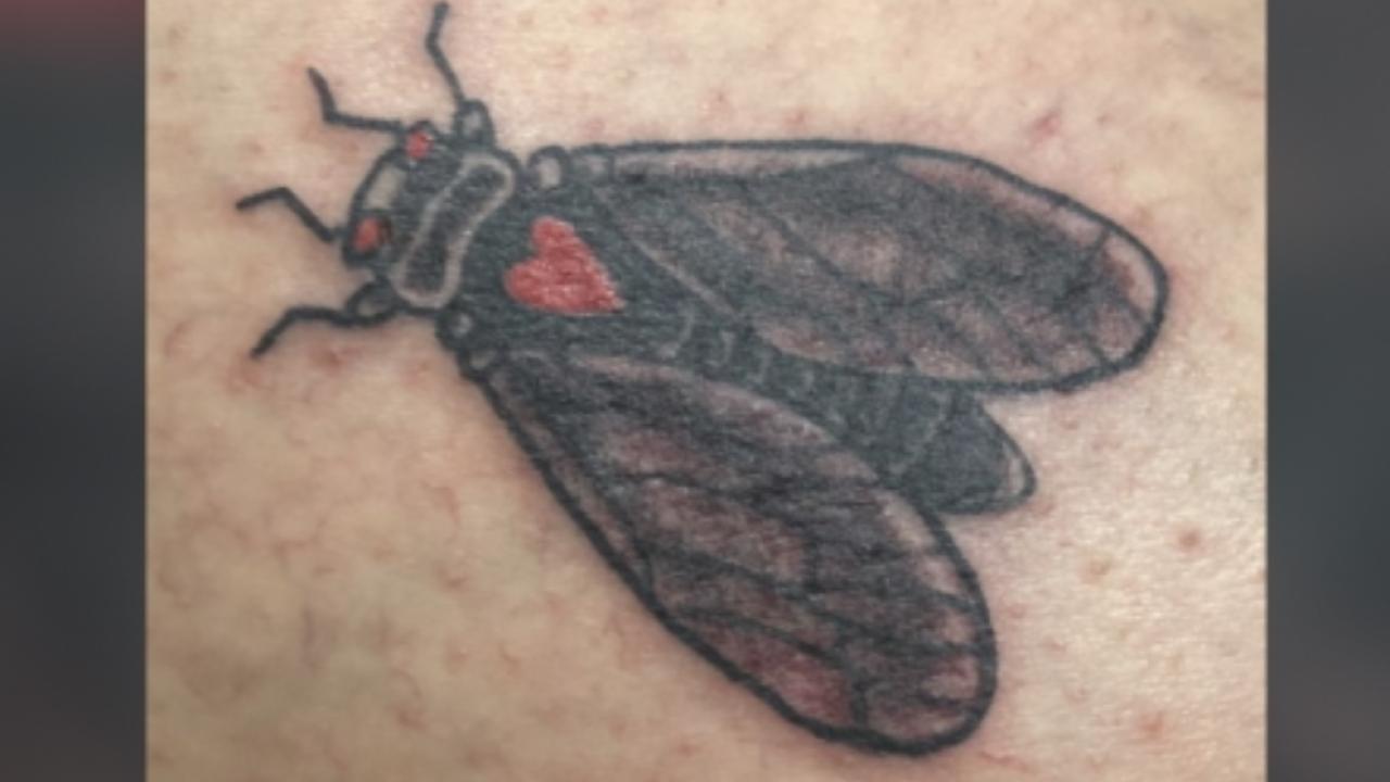cicada tattoo2 web.png