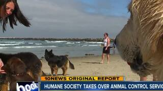 Humane Society takes over Animal Control for 6 cities in San Diego County