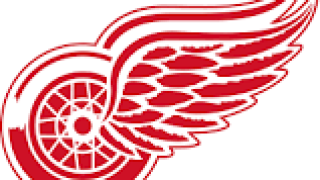 Fees waived on all single-game & preseason Red Wings tickets until Friday