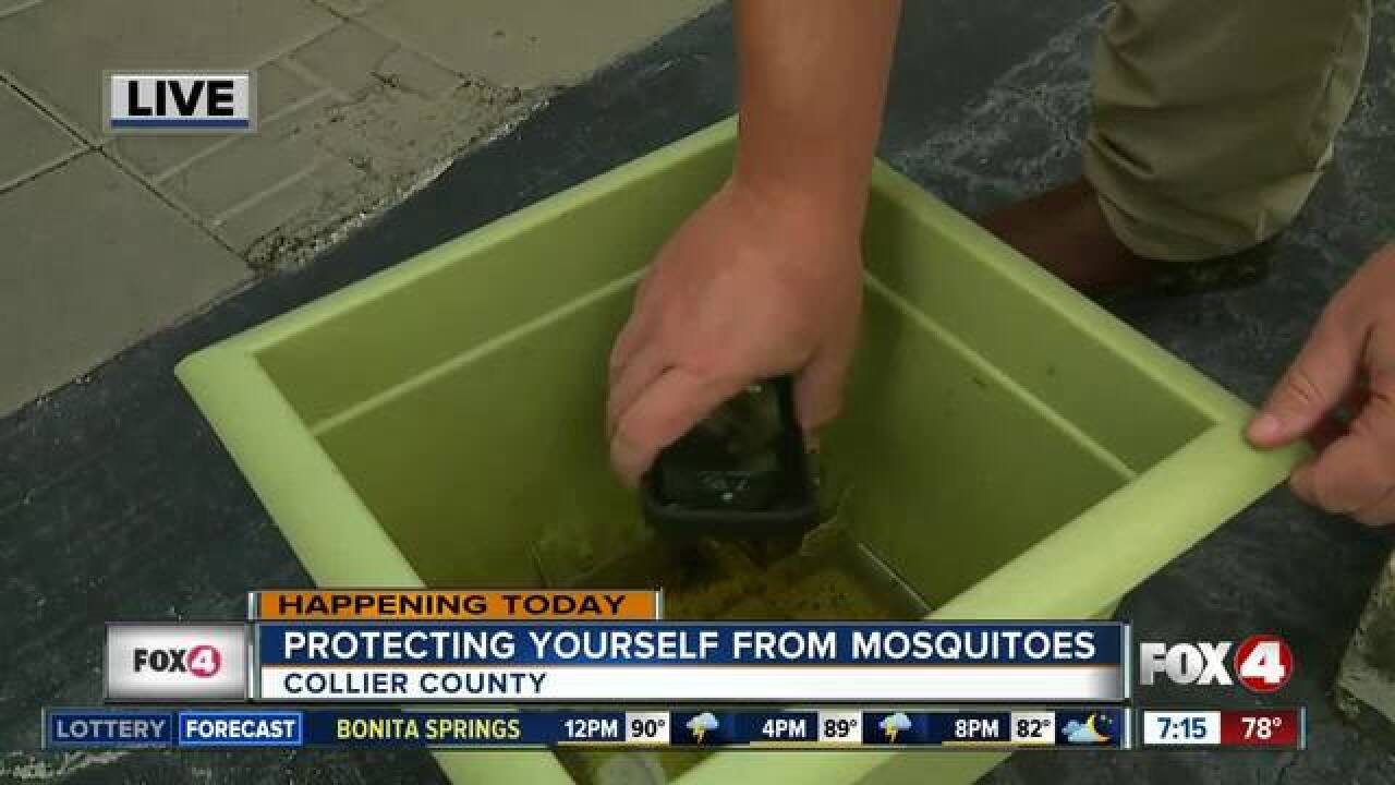 Mosquito control urges you to fight the bite