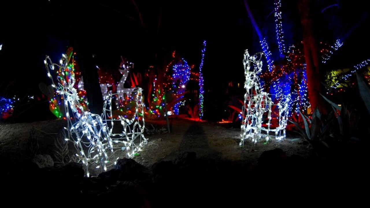 Reservations Full For Ethel M S Holiday Cactus Garden