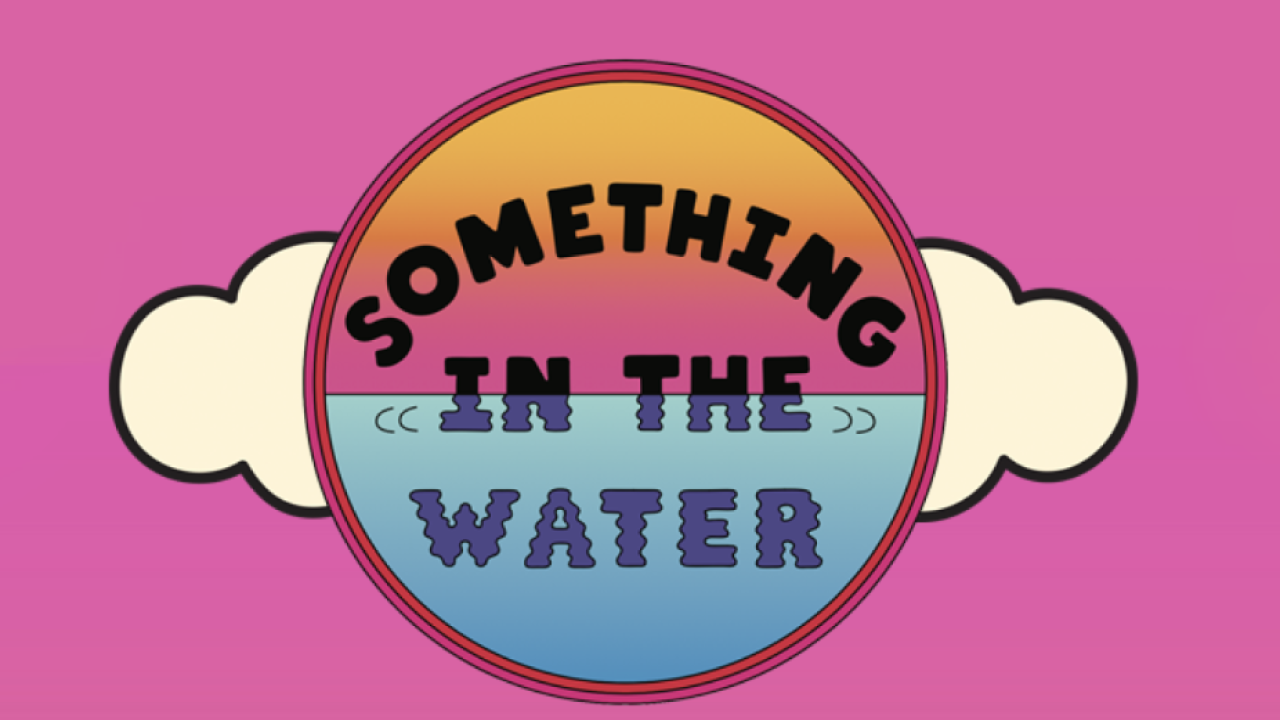 Set times released for 'Something in the Water' music festival