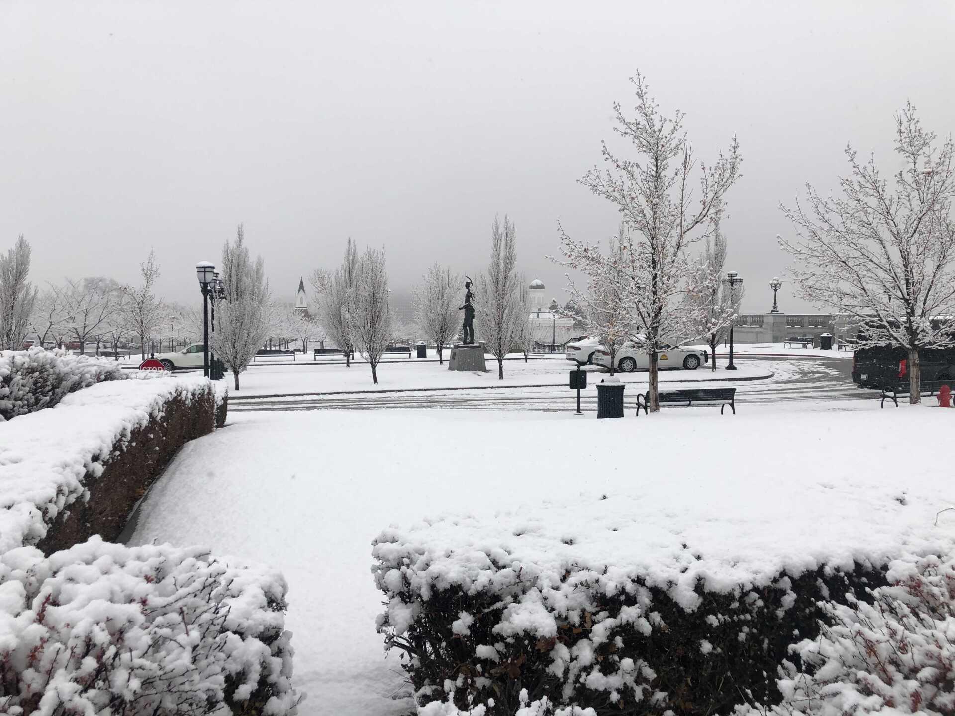 Snow Friday (1).jpg
