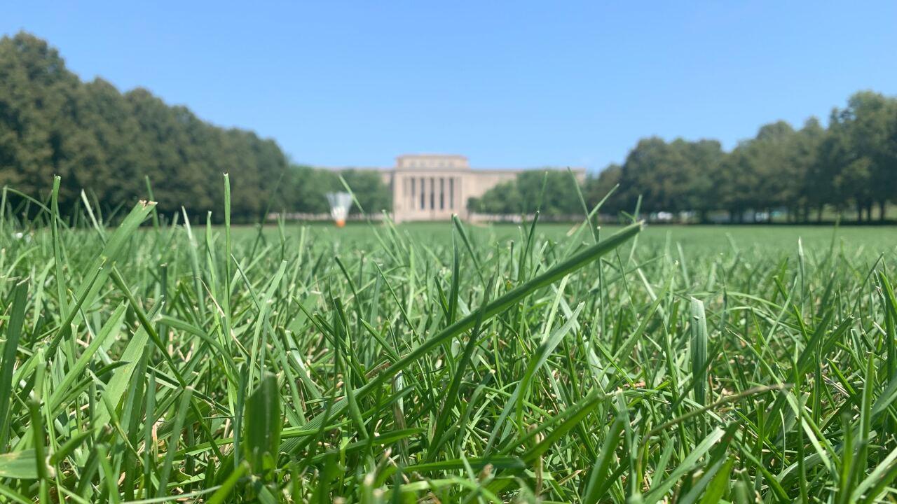 Nelson-Atkins Museum of Art lawn.jpg