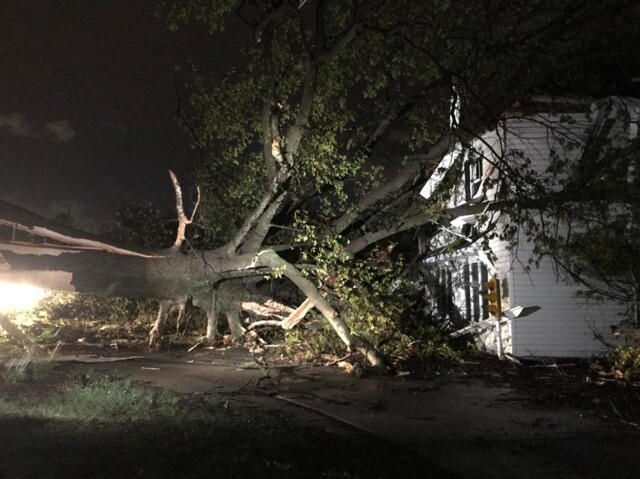 PHOTOS: Overnight storms topple trees, power lines, signs