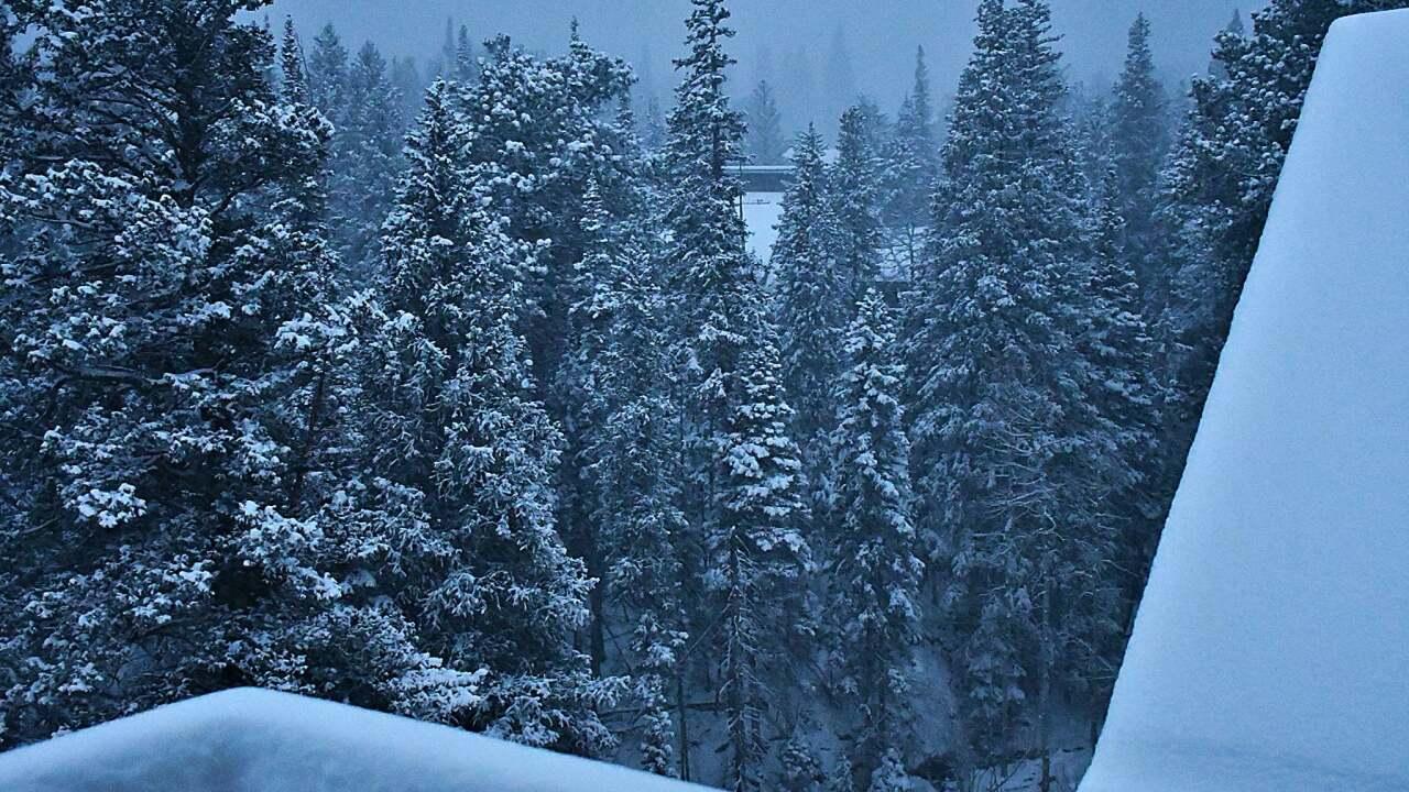 Allenspark_snow_Nov 24 2020