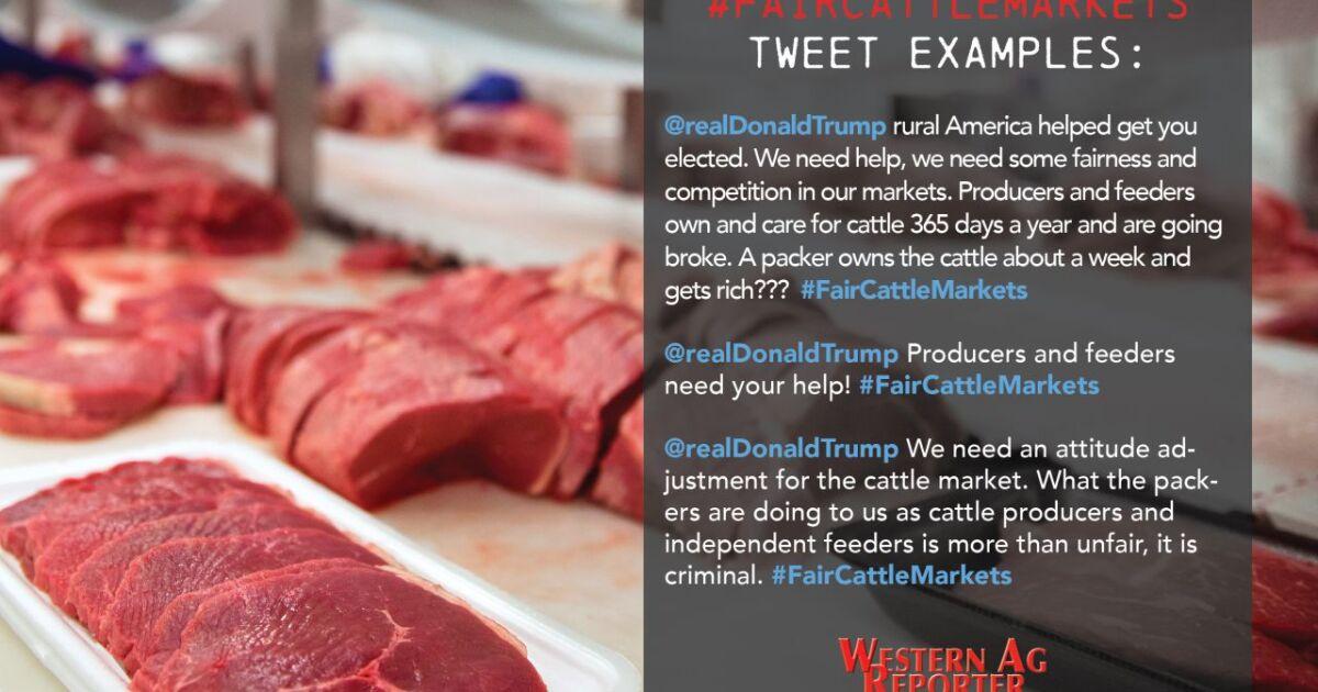 Cattlemen urged to send #FairCattleMarkets messages to President Trump