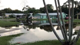 hobe sound flood.JPG