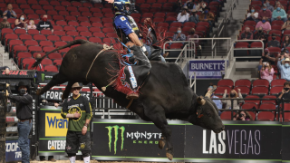 PBR Pacheco Louisville.png