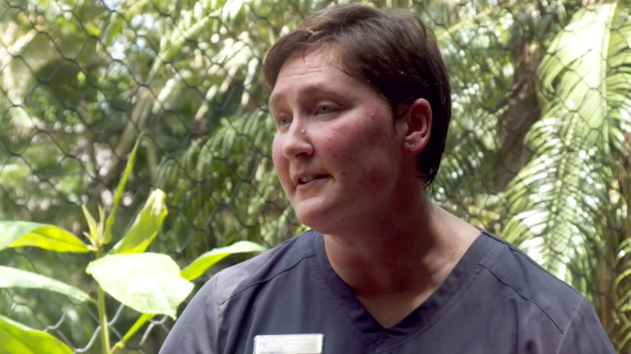 Dr. Kathy Woodie, director of animal care at the Palm Beach Zoo