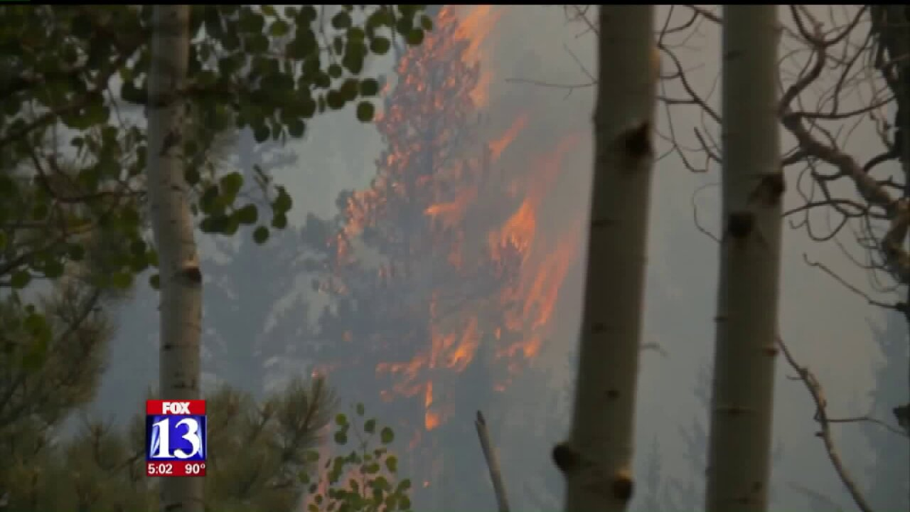 911 calls shed light on start of Brian Head Fire; blaze has burned 54,000acres