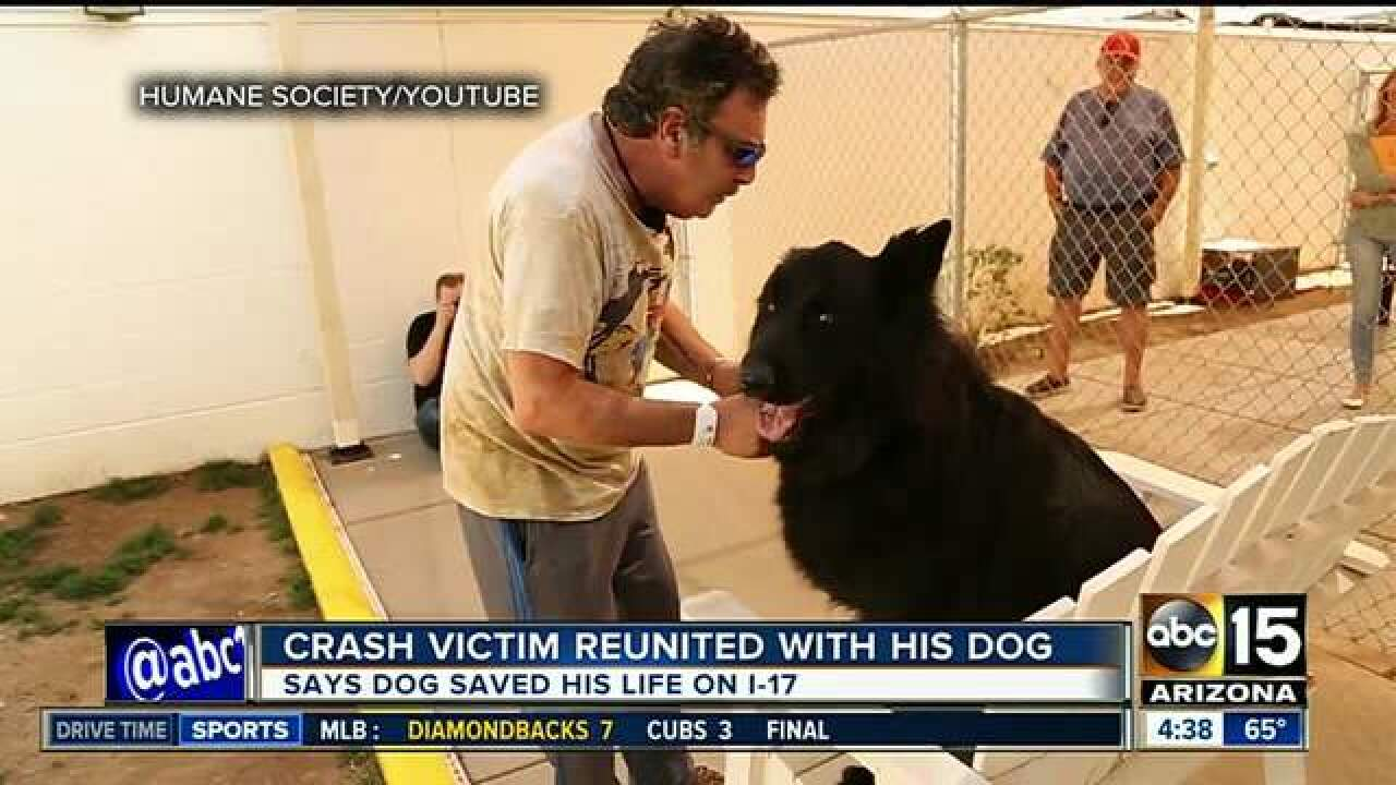 VIDEO: Man reunited with dog after Phoenix crash