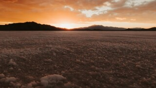 Enjoying the Salt Flats.jpg